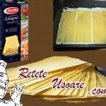 Lasagne8
